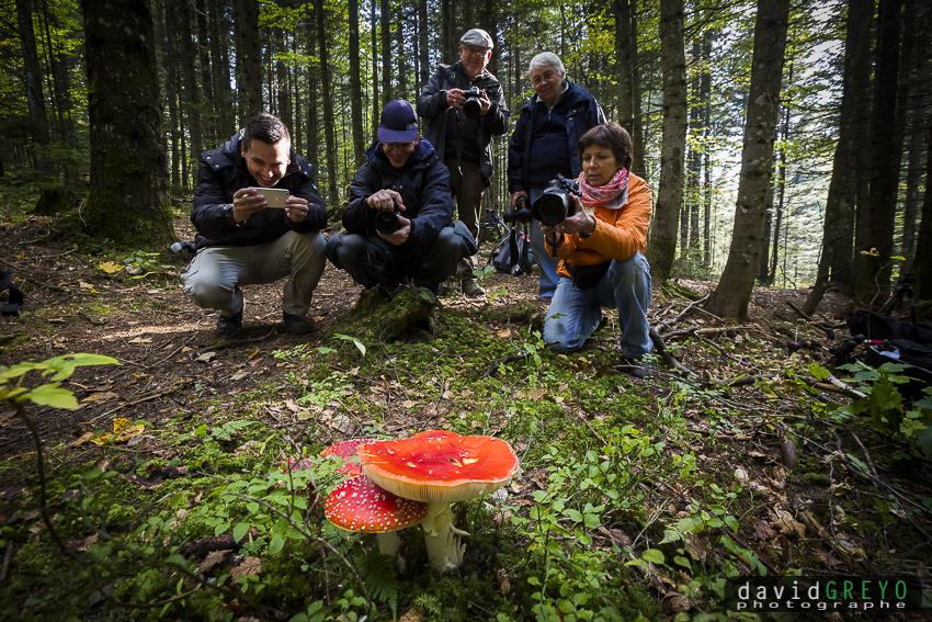 Aux champignons