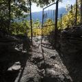 stage-vignes-du-Valais-3019