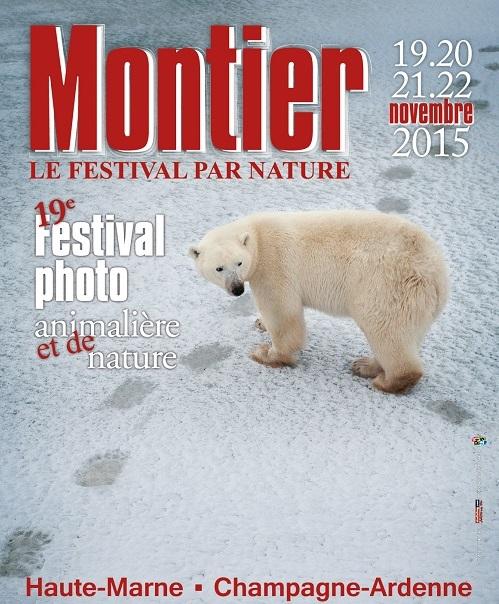 Montier 2015